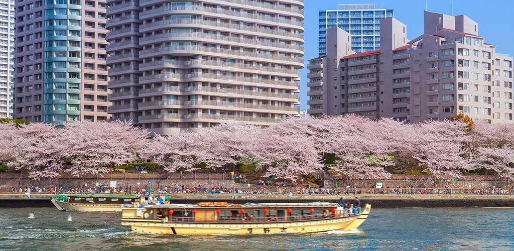 150910_japan_my_way4-5