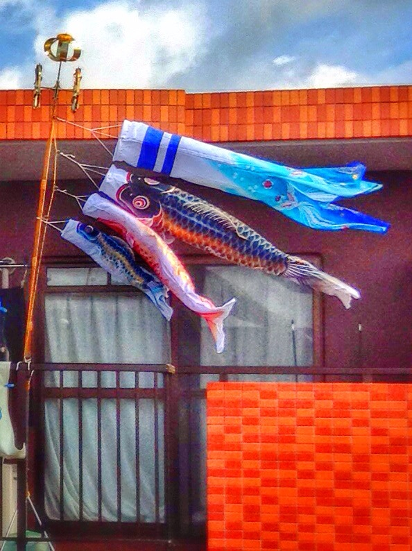 Koinobori representing a father, mother, and two children.