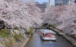 Spring at Matsukawa River