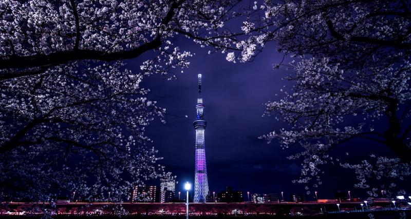 Tokyo Skytree night view