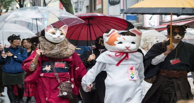 Kagurazaka Bakeneko Festival | Halloween parades in Tokyo